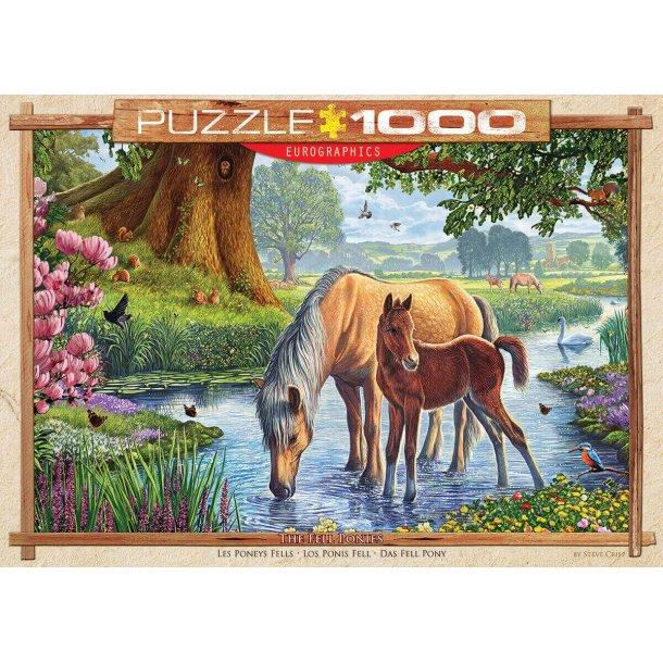 Heste / Pony og føl ved åen, 1000