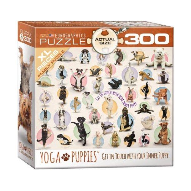 Yoga hunde, 300